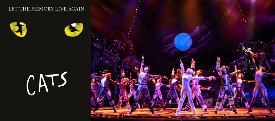 Cats at Shubert Theater