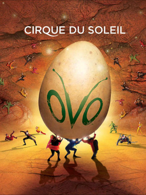 Cirque Du Soleil Ovo, Webster Bank Arena , New Haven